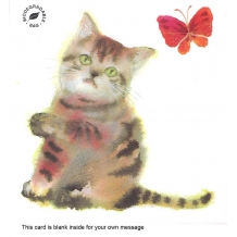 """Kitten & Butterfly"" card by Chinatsu Sunaga"