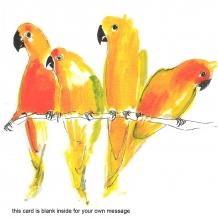 """Parrots"" card by Becky Brown"