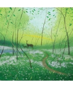 """Wild Garlic in the Spring Woods"" card by Nicholas Hely Hutchinson"