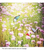 """Summer Meadow"" card by Mark Owen"