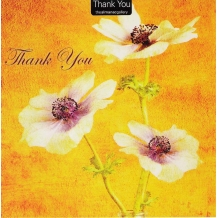"""A Big Thank You"" Thank you card"