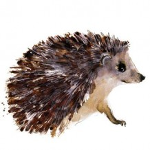 """Hedgehog"" by Becky Brown"