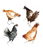 """Hens"" by Becky Brown"