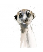 """Meerkat"" by Becky Brown"