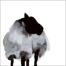 """Black Sheep"" blank greeting card by Rachel Tudor Best"