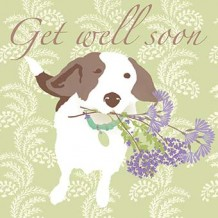 """Get well soon"" get well card"