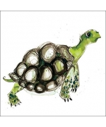 """Green Tortoise"" card by Becky Brown"